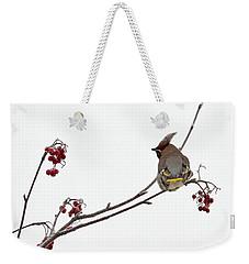 Bohemian Waxwings Eating Rowan Berries Weekender Tote Bag by Jouko Lehto