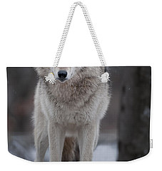 Timber Wolf  Weekender Tote Bag by Wolves Only