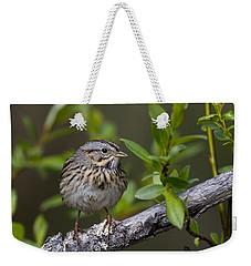 Lincolns Sparrow Weekender Tote Bag