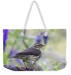Northern Waterthrush Weekender Tote Bag