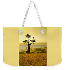 A Boab Sunrise Weekender Tote Bag by Holly Kempe