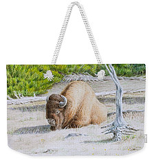 A Buffalo Sits In Yellowstone Weekender Tote Bag
