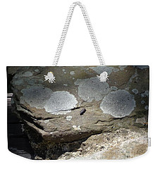 Weekender Tote Bag featuring the photograph A Bug's World by Christina Verdgeline