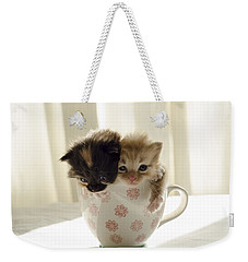 A Cup Of Cuteness Weekender Tote Bag by Spikey Mouse Photography