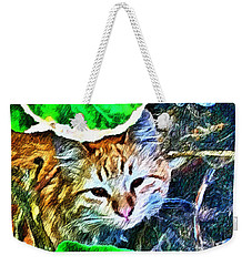 A Curious Cat Weekender Tote Bag