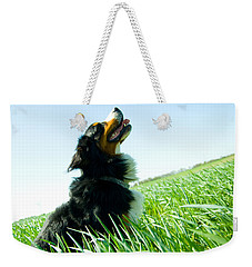 A Cute Dog On The Field Weekender Tote Bag