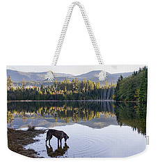 Weekender Tote Bag featuring the photograph A Dog At The Lake by Peggy Collins