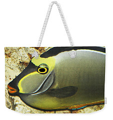Weekender Tote Bag featuring the photograph A Fish From The Ocean by Tom Janca