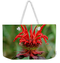 A Flowering Red Castle Beauty Weekender Tote Bag by Kim Pate