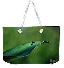 Weekender Tote Bag featuring the photograph A Fly And His Shadow by Thomas Woolworth