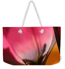A Glimpse Into Eternity Weekender Tote Bag by Connie Handscomb