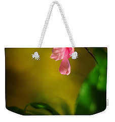 Weekender Tote Bag featuring the photograph A Golden Day Portrait Of A Pink Camellia by Rebecca Sherman