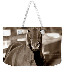 A Horse Is A Horse Weekender Tote Bag by Deena Stoddard