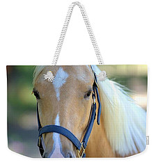 Weekender Tote Bag featuring the photograph A Loyal Friend by Gordon Elwell