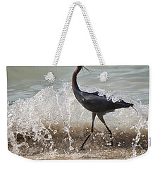 A Morning Stroll Interrupted Weekender Tote Bag