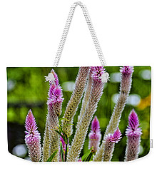 A Place Of Delight Weekender Tote Bag
