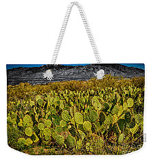 Weekender Tote Bag featuring the photograph A Prickly Pear View by Mark Myhaver