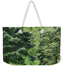 Weekender Tote Bag featuring the photograph A Quiet Moment by Christina Verdgeline