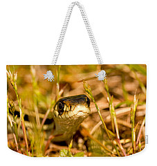 Weekender Tote Bag featuring the photograph A Snake In The Grass by Peggy Collins