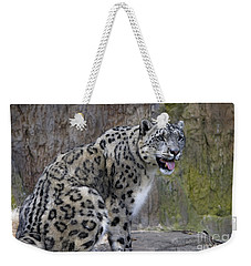 Weekender Tote Bag featuring the photograph A Snow Leopards Tongue by David Millenheft