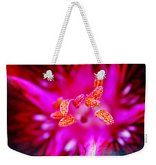 Weekender Tote Bag featuring the photograph A Splash Of Colour by Wendy Wilton