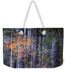A Splash Of Fall Color Weekender Tote Bag