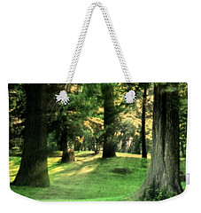 Weekender Tote Bag featuring the photograph Spring Afternoon In Brookdale Park by Kellice Swaggerty