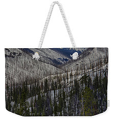 A Spring's Look To The Right On The Way Into Yellowstone Weekender Tote Bag