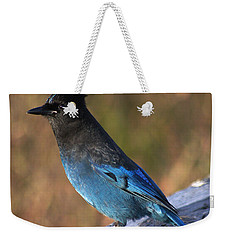 A Stellers Jay On The Boardwalk Weekender Tote Bag by Stanza Widen