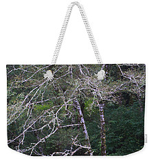 Weekender Tote Bag featuring the photograph A Tree Along The Oregon Coast by Tom Janca