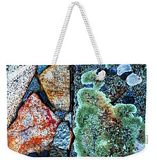 A  View Of Nature Weekender Tote Bag