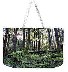 Weekender Tote Bag featuring the photograph A Walk In The Forest by Peggy Collins
