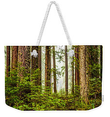 A Walk Inthe Forest Weekender Tote Bag by Ken Stanback