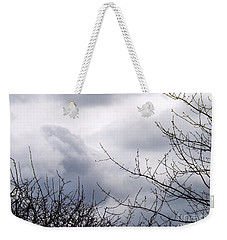 Weekender Tote Bag featuring the photograph A Winter's Day by Robyn King