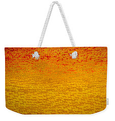 About 2500 Tigers Weekender Tote Bag by Charlie Baird