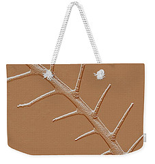 Weekender Tote Bag featuring the photograph Abstract Branch Winter Net Leaf Hackberry Tree by Tom Janca