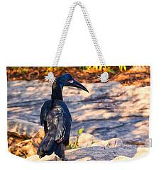 Abyssinian Ground Hornbill Weekender Tote Bag by Chris Flees