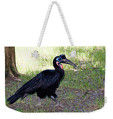 Abyssinian Ground-hornbill Weekender Tote Bag by Gregory G. Dimijian