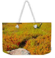 Weekender Tote Bag featuring the painting Acadia Spring by Jeff Kolker