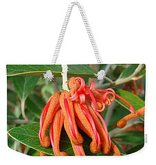 Weekender Tote Bag featuring the photograph Adaptable Exotic by Cheryl Hoyle