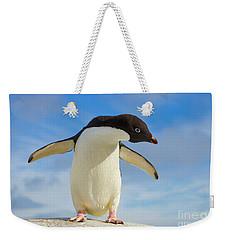 Adelie Penguin Flapping Wings Antarctica Weekender Tote Bag by Yva Momatiuk John Eastcott