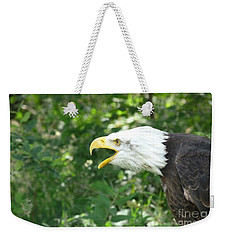 Weekender Tote Bag featuring the photograph Adler Raptor Bald Eagle Bird Of Prey Bird by Paul Fearn