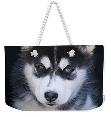 Adorable Siberian Husky Sled Dog Puppy Weekender Tote Bag