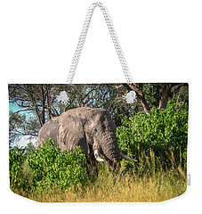 African Bush Elephant Weekender Tote Bag