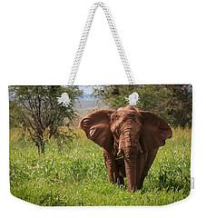 African Desert Elephant Weekender Tote Bag