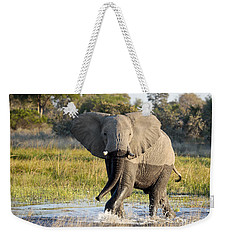 Weekender Tote Bag featuring the photograph African Elephant Mock-charging by Liz Leyden