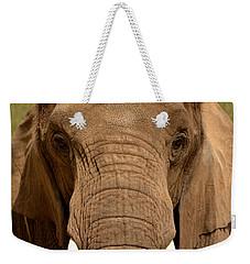 Weekender Tote Bag featuring the photograph African Elephant by Nadalyn Larsen
