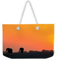 Weekender Tote Bag featuring the photograph African Elephant Sunset by Amanda Stadther