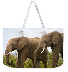 African Elephants Weekender Tote Bag