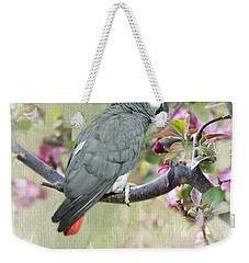 African Gray Among The Blossoms Weekender Tote Bag by Betty LaRue